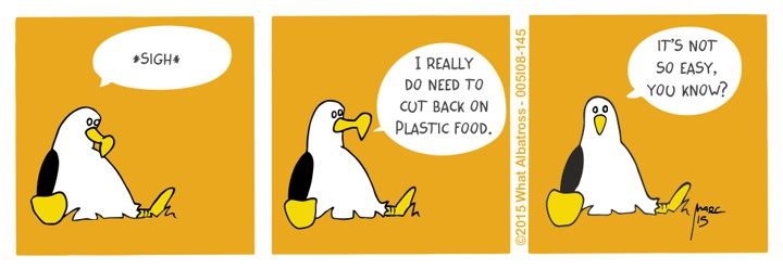 Plastic Food